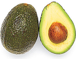 Avocado- Harmful food item for dogs