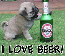 Alcohol products are harmful for dogs