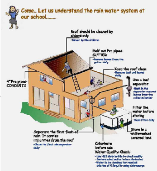 Home rainwater harvesting plant how to install rainwater for Rainwater harvesting at home