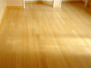Review of Cork Flooring